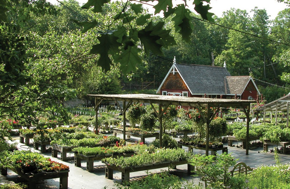 Best Place to Propose in Rhinebeck, NY