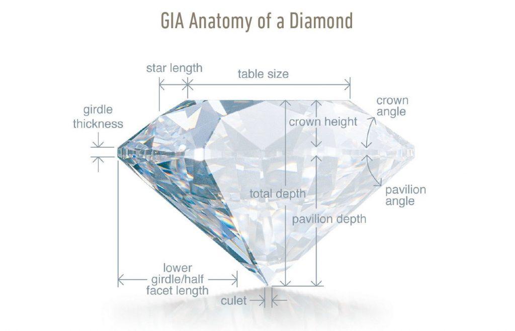 GIA GG Program - Anatomy