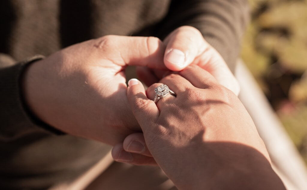 round diamond engagement ring - The Cathedral Setting